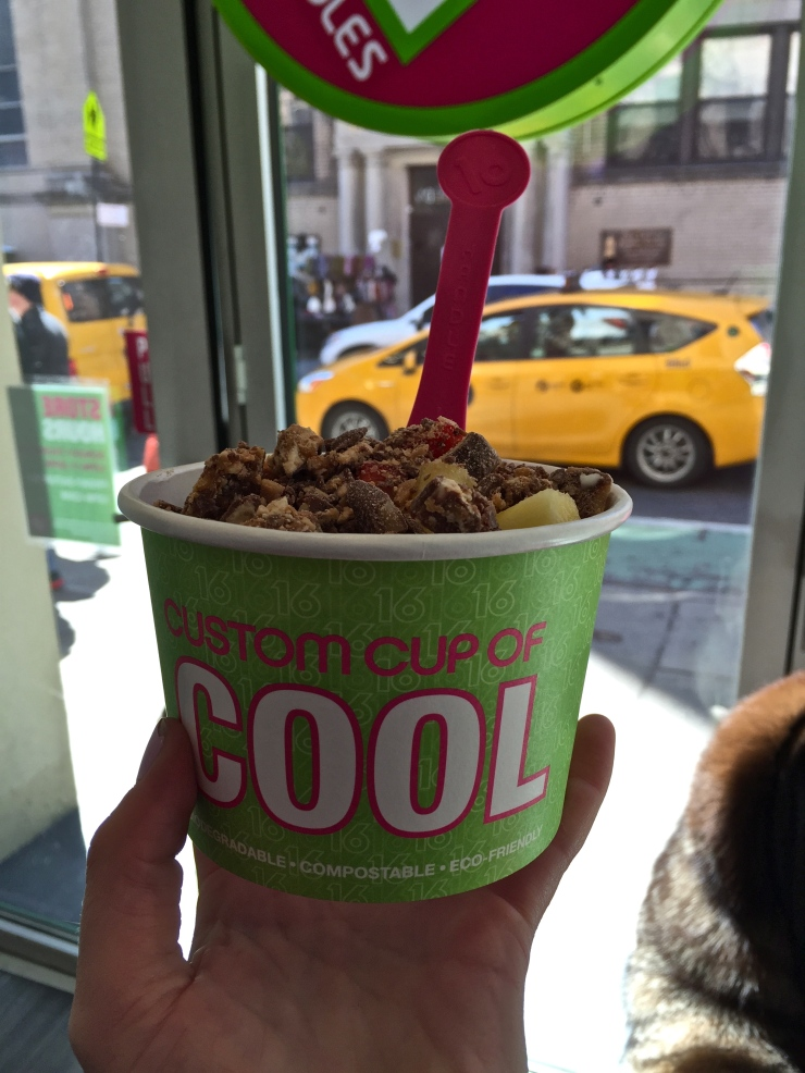 FrozenYoghurt at 16 Handles  - New York